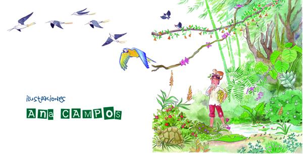 ilustraciones anacampos